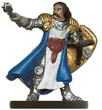 PHB Heroes #15 Male Human Cleric (No Card)