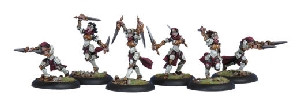 Warmachine: Protectorate - Daughters of the Flame Unit Box (6)