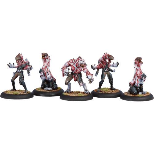 Hordes: Legion - Incubi Unit Box (5)