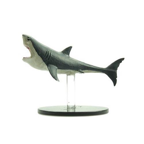 Skull & Shackles #032 Shark (U)