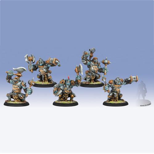 Hordes: Trollbloods - Trollkin Champions Unit Box (5)