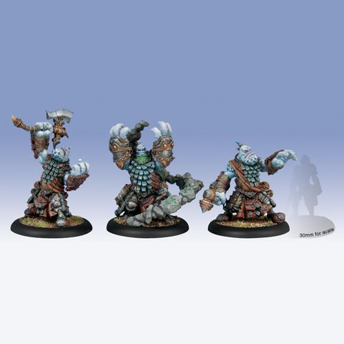 Hordes: Trollbloods - Trollkin Runeshapers Unit Box (3)