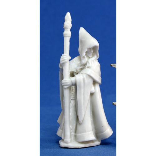 Dark Heaven Bones: Anirion, Wood Elf Wizard