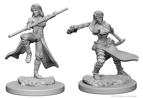 D&D Nolzur's Marvelous Unpainted Miniatures: Human Female