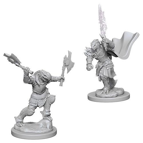 D&D Nolzur's Marvelous Miniatures: Dragonborn Female Fighter