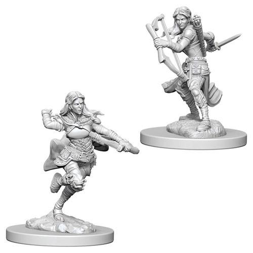 D&D Nolzur's Marvelous Miniatures: Air Genasi Female Rogue (2)