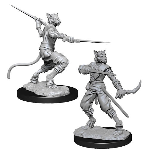 D&D Nolzur's Marvelous Unpainted Miniatures: Male Tabaxi