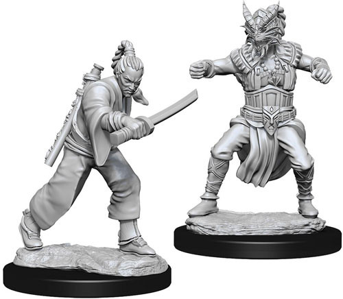 D&D Nolzur's Marvelous Unpainted Miniatures: Male Human Monk (2)