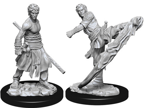 D&D Nolzur's Marvelous Unpainted Miniatures: Male Half-Elf Monk (2)