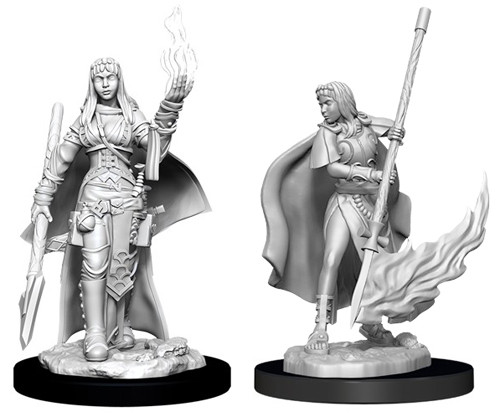 Pathfinder Deep Cuts Unpainted Miniatures: W11 Female Human Oracle