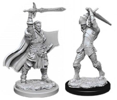 D/&D Nolzur/'s Marvelous Unpainted Miniatures Male Human Paladin