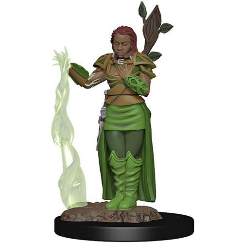 D&D Premium Painted Figure: Female Human Druid