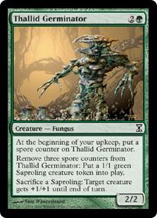 MTG Thallid Shell-Dweller Time Spiral Magic Card