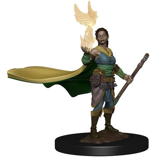 D&D Premium Painted Miniature: Male Tiefling Sorcerer (1